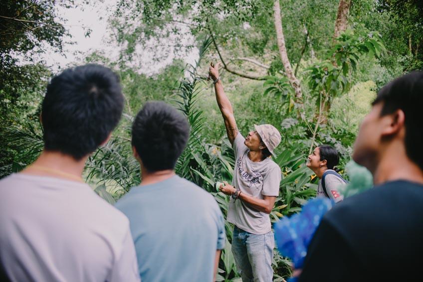 ที่พักสุราษฎร์ธานี เขาสก Our Jungle Camp
