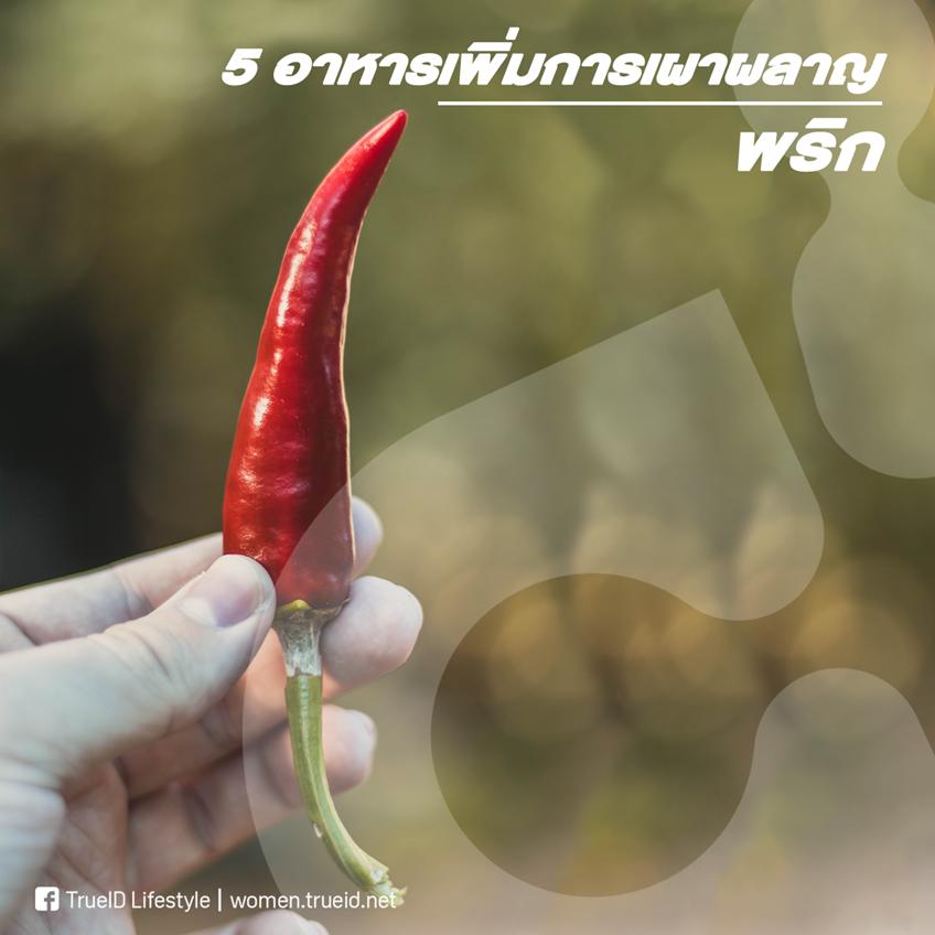 ระบบเผาผลาญไม่ดี ต้องมีตัวช่วย 5 อาหารที่ช่วยเพิ่มการเผาผลาญให้กับร่างกาย