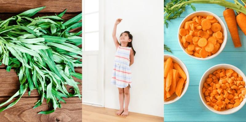 10 ผักเพิ่มความสูง อยากตัวสูงทำยังไง กินผักแบบไหนดี ผักเพิ่มแคลเซียม